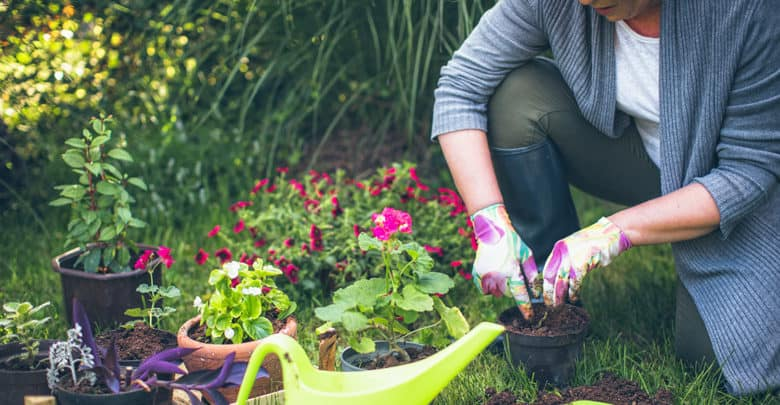 Photo of Top 5 Garden Mistakes And How To Avoid Them