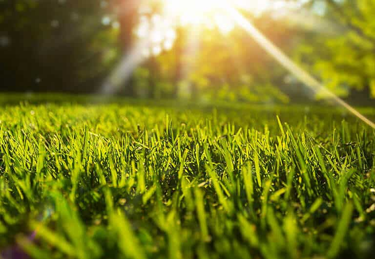 Get the most out of your lawn equipment