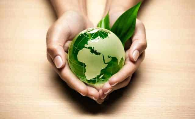 Ways to make your business green